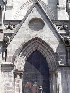 tortugas en el gótico